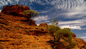 Kings Canyon. Australian Kings Canyon with typical red rocks and blue sky royalty free stock image