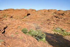 Kings canyon in Australia Royalty Free Stock Photos