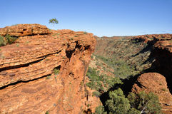 Kings canyon in Australia Royalty Free Stock Photos