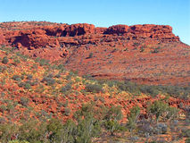 Kings Canyon, Australia. Rugged structure of red rock of Kings Canyon with colorful shrubs bushes trees and grass Stock Photos