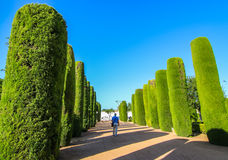 Kings Castle garden Royalty Free Stock Photography