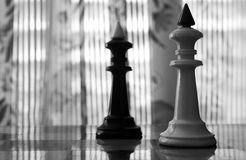 Kings of chess Stock Photography