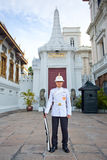 Kings Guard in Grand Royal Palace Royalty Free Stock Photos