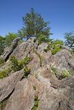 Kings Mountain Pinnacle. At Crowders Mountain State Park in the Piedmont of North Carolina stock image