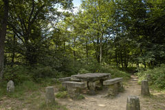 Kings table in fontainebleau forest royalty free stock photos