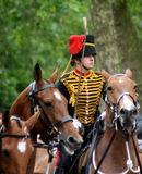 Kings Troop Royal Horse Artillery Royalty Free Stock Photo