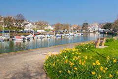 Kingsbridge Devon England Royaltyfria Bilder