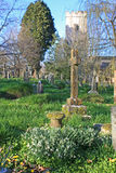 Kingskerswell church graveyard Stock Images