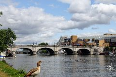Kingston Bridge. Is a road bridge at Kingston upon Thames in south west London, England, carrying the A308 across the River Thames. It joins the town centre of stock images
