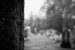 Kingston Cemetery fotografie stock