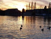 Kingston upon Thames. River Thames royalty free stock photos