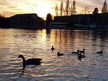 Kingston upon Thames. River Thames stock image