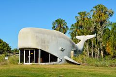 Large Whale structure in Kinka Beach, Queensland. Kinka Beach, Queensland, Australia - December 27, 2017. Large Whale building, designed by Kevin Logan and royalty free stock photo