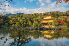 Kinkaku籍佛教寺庙金黄亭子,京都,日本 免版税库存图片