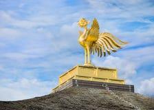 Kinkaku籍寺庙菲尼斯鸟在京都 免版税库存图片