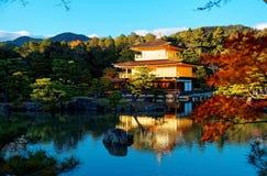 Kinkaku籍风景,一个著名禅宗佛教徒寺庙在京都日本,当金黄亭子看法闪烁在蓝色清楚的天空下 免版税库存图片