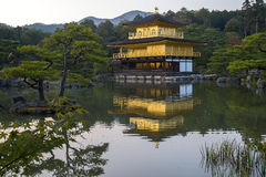 Kinkaku籍,金黄亭子在京都 库存图片