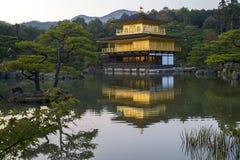 Kinkaku-ji den guld- paviljongen i Kyoto Fotografering för Bildbyråer