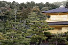 Kinkaku-ji (The Golden Pavilion). Rokuon-ji Temple, Kyoto, Japan. View of harmonious setting of pavilion in winter showing forest colors and upper floors Royalty Free Stock Photo