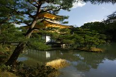 Kinkaku-ji Japan drawing royalty free stock photo