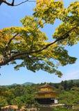 Kinkaku -kinkaku-ji, ook genoemd Tempel van het Gouden Paviljoen, officieel genoemd Rokuon -rokuon-ji Het is ??n van populairste  stock afbeelding
