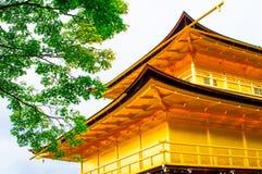 Kinkaku-ji tempel av den guld- paviljongen och ett träd royaltyfri foto