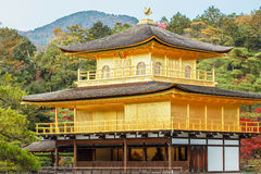 Kinkaku-ji tempel i Kyoto Arkivbild