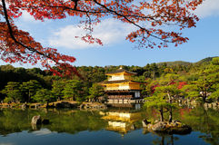 Kinkaku-ji Temple. Fall foliage at Kinkaku-ji temple in Kyoto, Japan. Kinkaku-ji literally means Temple of the Golden Pavilion. This temple is a Zen temple in Royalty Free Stock Image
