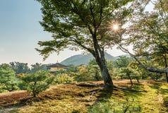 Kinkaku-ji Temple of the Golden Pavilion officially named Rokuon-ji. Deer Garden Temple Royalty Free Stock Image