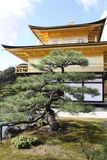 Kinkaku-Ji temple Kyoto Royalty Free Stock Photography