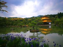 Kinkaku - jitempel arkivbild