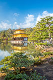 Kinkakuji寺庙在京都日本 免版税库存图片