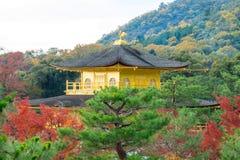 Kinkakuji寺庙或金黄亭子在京都 免版税库存图片