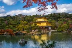 Kinkakuji寺庙有秋天槭树的金黄亭子在京都 库存照片