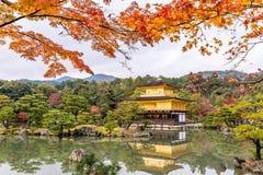 Kinkakuji寺庙的秋天季节金黄亭子在京都,日本 库存照片