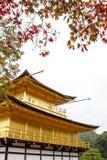 Kinkakuji寺庙的,京都日本金黄亭子 免版税库存照片