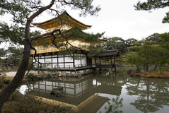 Kinkakuji,金黄亭子; 京都,日本 免版税库存图片