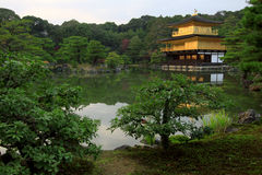 Kinkakuji  - the famous Golden Pavilion at Kyoto Stock Images
