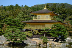 Kinkakuji golden pavilion Stock Photos
