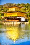 Kinkakuji (guld- paviljong), Kyoto, Japan Fotografering för Bildbyråer