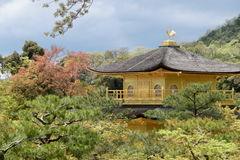 Kinkakuji at Kyoto Japan. The view of the roof of Kinkakuji from the hillside Royalty Free Stock Image