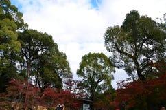 Kinkakuji liści koloru zmiana Japonia obrazy royalty free