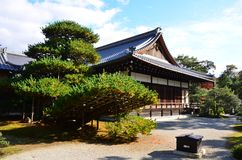Kinkakuji liści koloru zmiana Japonia Fotografia Royalty Free