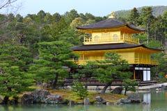 Kinkakuji tempel 库存照片