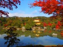Kinkakuji Tempel Stockbilder