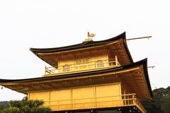 Kinkakuji tempel Arkivbild