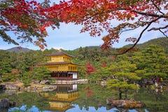 Kinkakuji tempel på hösten i Kyoto Arkivfoto
