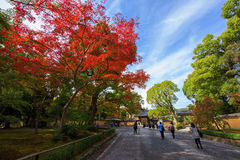 Kinkakuji tempelingång med höstlövverk royaltyfria foton