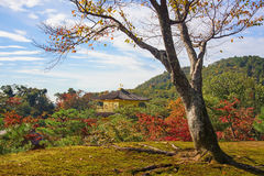 Kinkakuji Temple with autumn garden, Kyoto Stock Photos