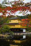Kinkakuji temple golden pavilian in autumn Royalty Free Stock Images
